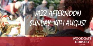 Jazz afternoon. Banner 2016
