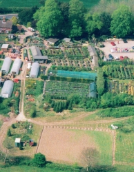 Woodgate-Nursery-Aerial-Photo