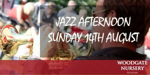 Jazz afternoon. Banner 2016