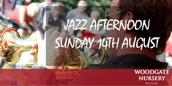 Jazz Afternoon Sunday 14th August