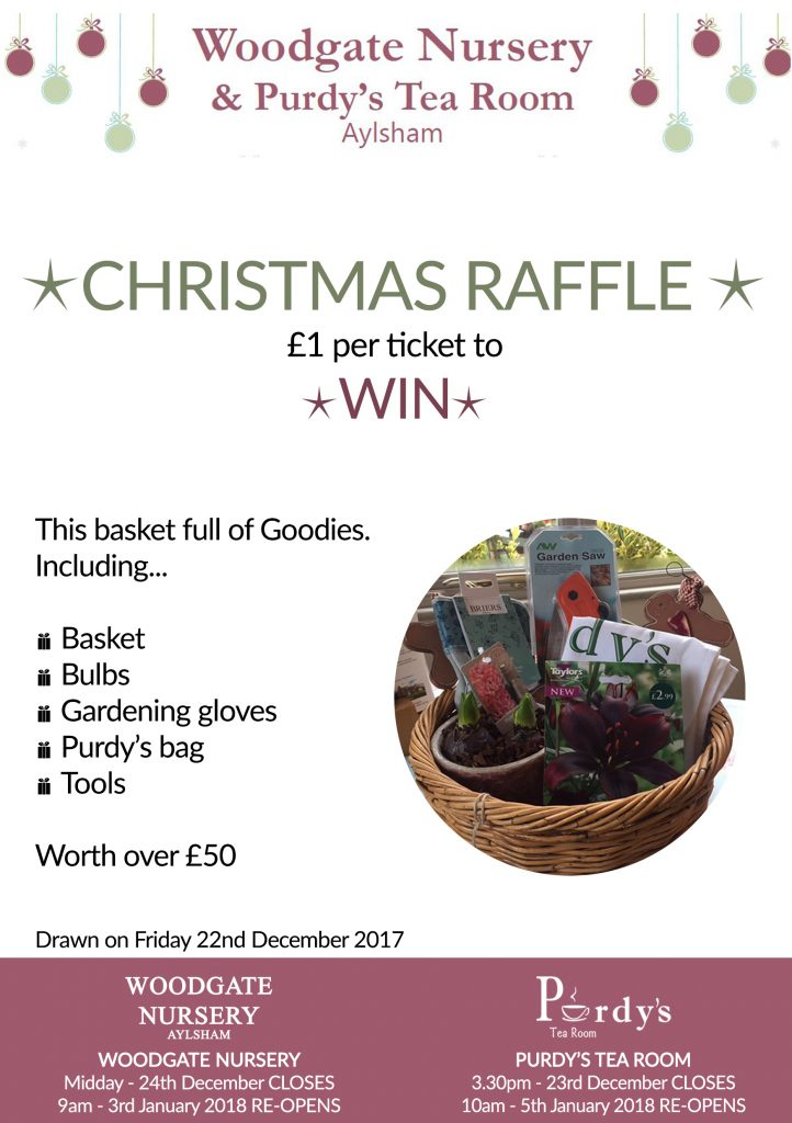 Christmas Charity Raffle