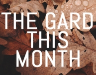 What to do in your garden in October